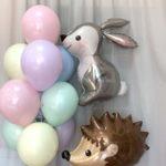 шар заяц